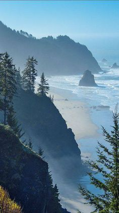 Light fog at Boardman State Park on the southern Oregon coast • photo: Larry Andreasen on Flickr #Earth #Beautiful #Landscape http://on.fb.me/1c9JLq8
