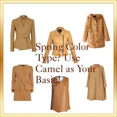A great base for Warm Autumn colour types - I find warm autumn has some warm spring cross overs Bright Spring, Warm Spring, Warm Autumn, Clear Spring, Spring Color Palette, Spring Colors, Light Spring Palette, Color Type, Type 1