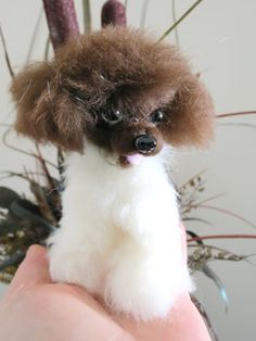 A mini, doll version of a young Huxtable ;-) #partipoodle #doll