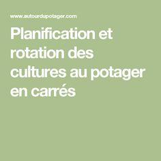Planification et rotation des cultures au potager en carrés