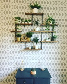 Shelves Above Toilet, Wooden Wall Shelves, Wall Shelves Design, Shelf Wall, Plant Shelves, Display Shelves, Pallet Projects Diy Garden, Tv Decor, Home Decor