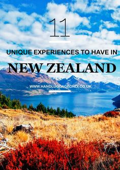 Planning a trip to New Zealand? Check out these tips for your unique travel experience!