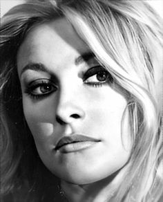 CXzavier Vintage Hollywood, Classic Hollywood, In Hollywood, Vintage Vogue, Sharon Tate, Beautiful Mind, Most Beautiful Women, Roman Polanski, Ethereal Beauty