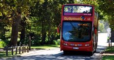 Official City tour on the Double Decker Hop on, Hop off Bus, Day Tours to Cape Point and the Wine Country, Cruises and much more! Bus City, Fine Wine, Day Tours, Wine Country, Cape Town, South Africa, Cruise, Travel, Feelings
