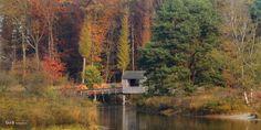 de Oldemeijer - #GdeBfotografeert Autumn Leaves, River, Outdoor, Outdoors, Fall Leaves, Autumn Leaf Color, Outdoor Games, The Great Outdoors, Rivers