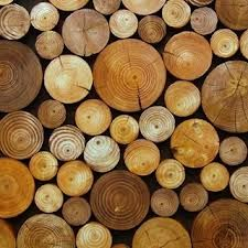 Decorative Logs   Google Search