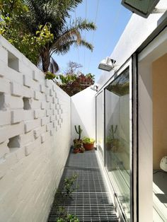 Love this outer wall for tight quarters - Shed-Sydney-Richard-Peters-Associates-Heidi-Dokulil-steel-mesh-outdoor-deck