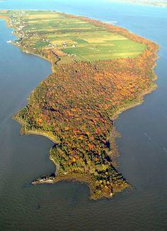 La Réserve naturelle Jean-Paul-Riopelle à L'Isle-aux-Grues est une zone écologique de 48 hectares et abrite une érablière tricentenaire.