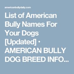 2 best healthy raw dog food recipes for american bullies american list of american bully names for your dogs updated american bully dog breed info center forumfinder Choice Image
