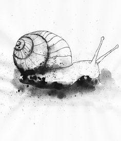 Zeichnungen aus Tinte und Aquarellen: Tag 60: Die Schnecke