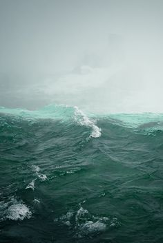 About 70 percent of the Earth's surface is water-covered, and the oceans hold about 96.5 percent of all Earth's water.