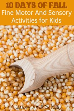 10 days of fall fine motor and sensory activity ideas for children.