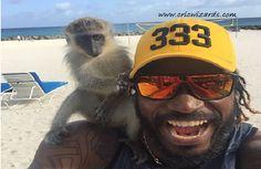 Caribbean six machine Chris Gayle's new Drinking partner:video:http://cricwizards.com/caribbean-six-machine-chris-gayles-new-drinking-partner/