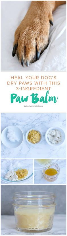 Rich shea butter, beeswax and coconut oil combine to form an ultra-healing paw balm to get the pep back in your doggie's step! get the full recipe here: http://paleo.co/doggiepawbalm