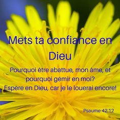 Où as-tu mis ta #confiance ? #versetdujour #laBible Little Prayer, Life Words, Daughter Of God, Quotes About God, Faith In God, Jesus Loves, Gods Love, Sabbats, Verses