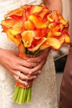 Calla Lily Bridal Bouquet designed by Lana with Fairbanks Florist. Calla Lillies Bouquet, Calla Lily Bridal Bouquet, Peach Bouquet, Calla Lily Wedding, Yellow Bouquets, Bride Bouquets, Bride Flowers, Wedding Flowers, Bouquet Wedding