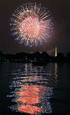 Fireworks over Washington DC with the Washington Monument in the background (: