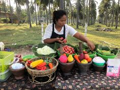 One of my favourite street food scenes from my recent trip to Thailand. Vibrant colours of the fruit and veg, palm trees as the backdrop… Animal Experiences, Weird Food, Fruit And Veg, New Travel, Thailand Travel, Wine Tasting, Street Food, Palm Trees, Sustainability