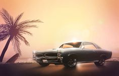 GTO by Fábio Martins, via Behance