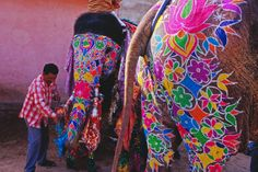 Take me anywhere in India to see painted festival elephants! LOVE.