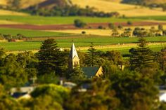 Barossa Grounds: View over Tanunda. Image by Dragan Radocaj Photography. Good Grammar, South Australia, How To Find Out, Vineyard, Wine, Places, Photography, Travel, Outdoor