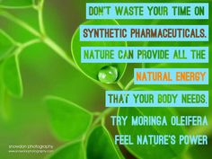 Moringa Oleifera is Nature's Best Natural Energy Booster