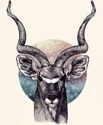 Kudu Art Print by Sara Collings - X-Small Animal Sketches, Animal Drawings, Buck Tattoo, Africa Tattoos, Animal Wallpaper, African Animals, Wildlife Art, Animal Tattoos, Ink Art