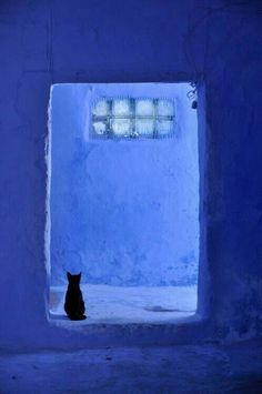 Chefchaouen, Morocco Love the composition of the photo and the color--like a lighter Yves Klein blue Illustrator Tutorial, Le Grand Bleu, Bleu Indigo, Guache, Jolie Photo, Love Blue, Color Blue, Blue Aesthetic, Something Blue