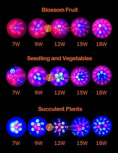 LED Grow Light for Blossom Fruit,Seedling and Vegetables, Succulent Plants