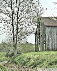 The barn and the tree watched over the travelers and gave them safe passage... Best Friends art print. Available on museum quality canvas archival textured paper or ready to hang acrylic mount. See link in bio.  #appalachia #artforsale #backtomyroots #backwaterstills #country_features #countrylife #countryliving #farmart #farmhousedecor #farmhousestyle #farmlife #fineartphotography #homedecor #lifeinthecountry #madeintn #modernfarmouse #oldbarn #OnlyTennISee #pocket_farms #ruralart…
