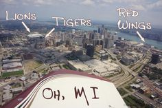 Lions, Tigers, Red Wings, Oh MI! www.downwithdetroit.com
