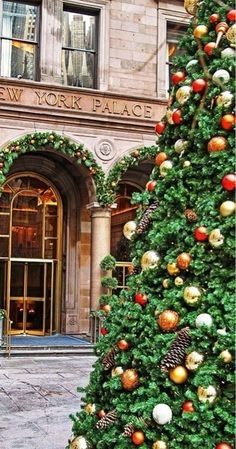 New York Palace Hotel, NYC. We stayed here on our honeymoon. Christmas In The City, New York Christmas, Christmas Love, Beautiful Christmas, All Things Christmas, Merry Christmas, Christmas Trees, Christmas Pictures, Rustic Christmas