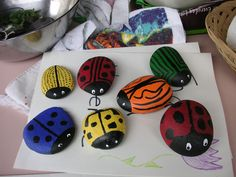 The children paint these, put their name & date on bottom and place in garden. Each year they can come to look for their ladybug rock as a memory of the school garden they enjoyed.