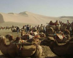 Renewed interest in the Silk Road only emerged among western scholars towards the end of the nineteenth century