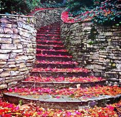 Autumnal carpet beautifying the stairs