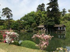 Blog for Japan trave