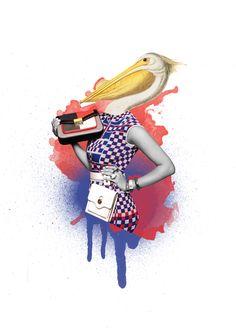 Pelican Brief - Alexandra Gallagher 2015