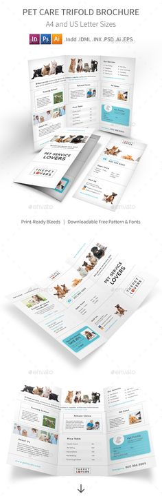 Pet Store Brochure Template - Microsoft Office Microsoft - microsoft word tri fold brochure template