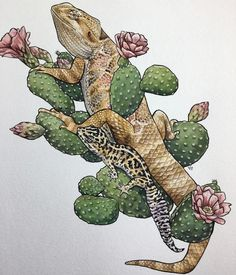 Bearded dragon with leopard gecko on nopal cactus Bart Tattoo, Gecko Tattoo, Lizard Tattoo, 1 Tattoo, Iguana Tattoo, Bearded Dragon Habitat, Bearded Dragon Funny, Cute Reptiles, Desenho Tattoo