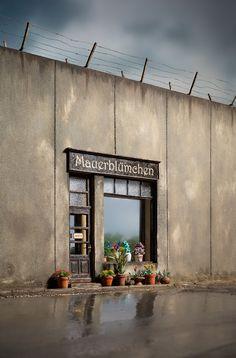 urban maauerblümchen gardening | artist: frank kunert Beige Color Palette, Colossal Art, Concrete Wall, Beautiful Mess, Easy Paintings, Diy Wall Art, Banksy, Surreal Art, Installation Art