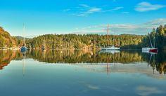 #eastsooke #VictoriaBC #VancouverIsland #reflections