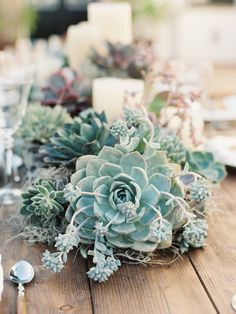 wood table gorgeous succulents plants bouquet boho rustic vintage