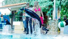 Experience   Much more than just a stunning Aquarium and Tiger Zoo. Here was set 20 years ago and part of Ocean Resort Koh Samui.  All our animals are happy as our guests through best care, space and through our employees who are hand-picked to ensure they are true animal lovers with passion. #travel #traveling
