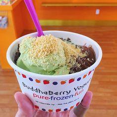 Vegan matcha & dark chocolate frozen yogurt, topped with: chia seeds, hemp hearts, & toasted coconut. Heaven  #buddhaberry