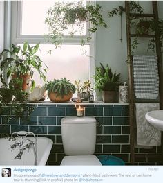 I D E A S Bathroom Plants If you don't have the patience to look after indoor plants now during the summeranother great place for plants is your bathroom.The moisture after a shower is perfect for Sweet Home, Bathroom Plants, Bathroom Green, Jungle Bathroom, Bathroom Candles, Garden Bathroom, Bohemian Bathroom, White Bathroom, Bathroom Vintage