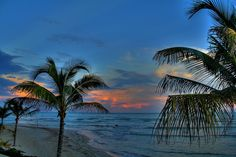 *Tropical twilight time~