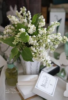 White lilac & Lilly of Valley May Flowers, Beautiful Flowers, Lily Of The Valley Flowers, Language Of Flowers, Day Lilies, Flower Bouquet Wedding, Calla Lily, Daffodils, Trees To Plant