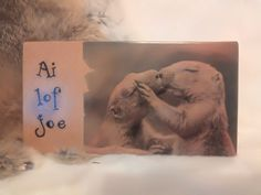 Deco-bordje: Grondeekhoorntjes - Ai lof joe | Karin's Deco Atelier