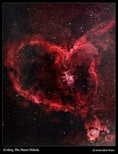 Heart Nebula  | and how could I not trust the stars with my wishes eh?