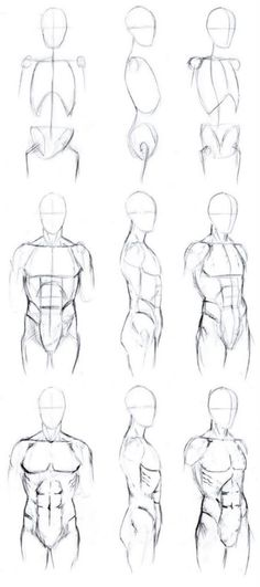 Sketching Of Human Body Step By Step - Basic male torso tutorial by timflanagan male drawing refrences drawing tips drawings body drawing How to draw a person whole body torso Human body. Human Figure Drawing, Figure Drawing Reference, Anatomy Reference, Human Anatomy Drawing, How To Draw Anatomy, Human Body Drawing, Human Sketch, Drawing Male Bodies, Drawing Body Poses